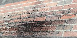 Jimmy Johnson's burnout on the Yard of Bricks, July 29, 2012-- Photo by: Chris Jones