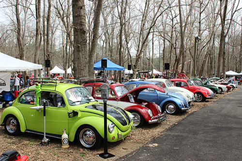 Cruise the Coop: VW Car Show